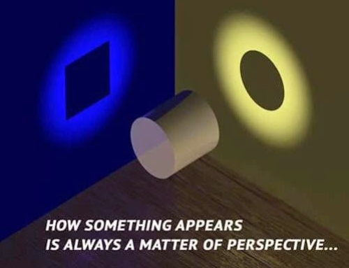 Perspective vs. Perception